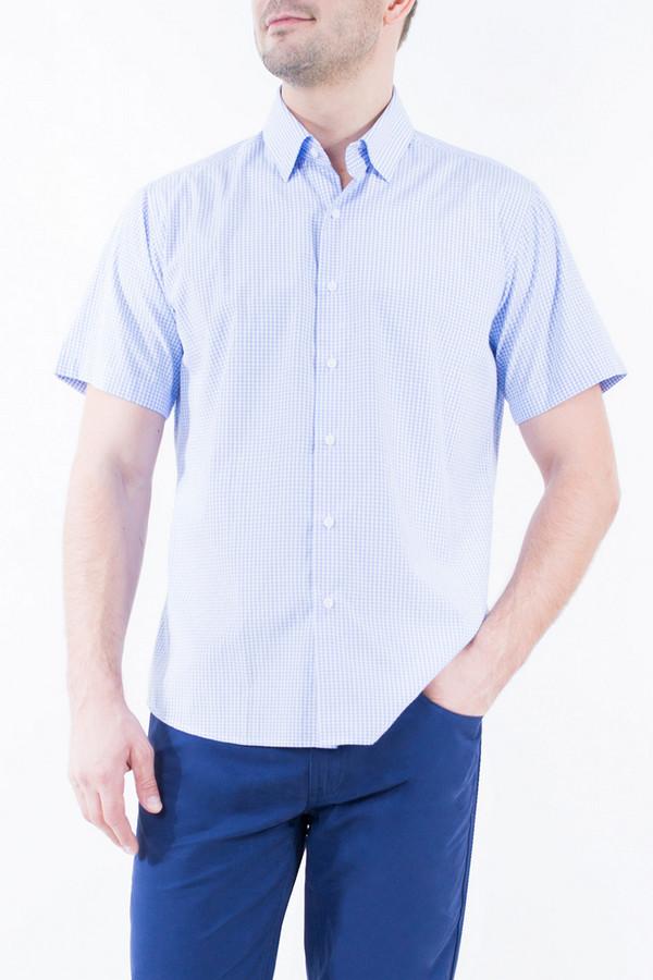 Рубашка Greg HormanРубашки и сорочки<br><br><br>Размер RU: 54<br>Пол: Мужской<br>Возраст: Взрослый<br>Материал: полиэстер 20%, хлопок 80%<br>Цвет: Голубой