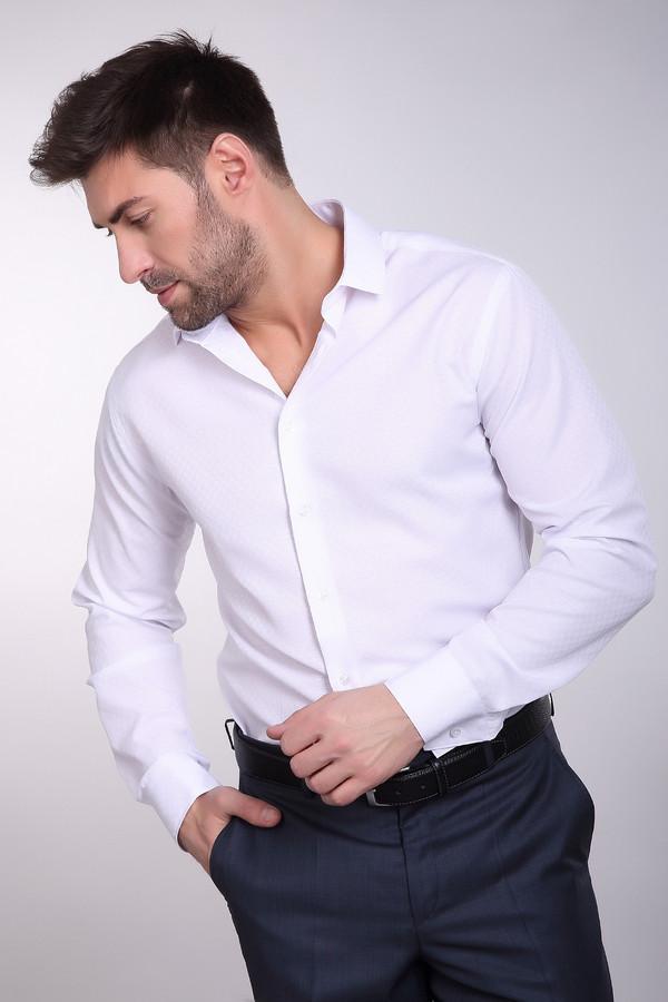 Рубашка BAZIONIРубашки и сорочки<br><br><br>Размер RU: 43/176-182<br>Пол: Мужской<br>Возраст: Взрослый<br>Материал: полиэстер 20%, хлопок 80%<br>Цвет: Белый