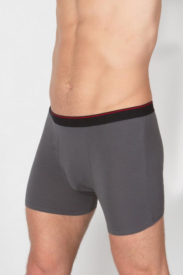 Трусы Uomo Fiero underwearТрусы<br><br><br>Размер RU: 52<br>Пол: Мужской<br>Возраст: Взрослый<br>Материал: эластан 5%, хлопок 95%<br>Цвет: Серый