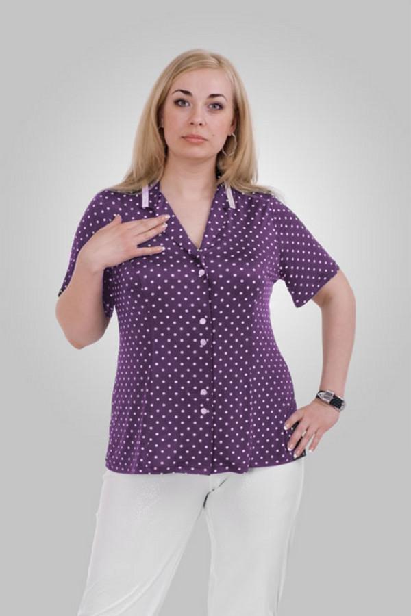 Блузa OLSIБлузы<br>Легкая весенняя блузка в горошек, короткий рукав, небольшой, тонкий, отложной воротник. Ткань содержит 10% эластана, что обеспечивает идеальную посадку на фигуры типа плюс-сайз.  Вид застежки: на пуговицах Вырез горловины: округлый Длина изделия: 65 см Длина рукава: короткий Покрой: прилегающий Рисунок: горох Фактура материала: трикотажная Тип карманов: без карманов Декоративные элементы: без элементов Конструктивные элементы: отложной воротник