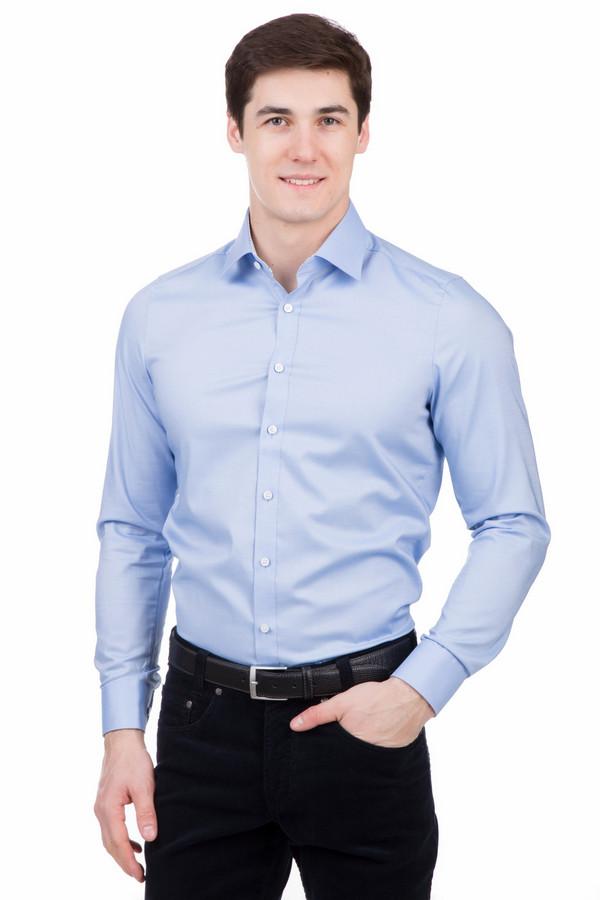 Рубашка с длинным рукавом OlympДлинный рукав<br>Рубашка с длинным рукавом Olymp голубая. Эта модель лаконичная и сдержанная. Идеально сидит и хорошо подходит для различных ситуаций на работе: деловых встреч или трудовых будней в офисе. Приятный глазу голубой цвет всегда уместен в мужском гардероба, а рубашек в такой гамме много не бывает. Состав: хлопок с добавлением эластана.<br><br>Размер RU: 45<br>Пол: Мужской<br>Возраст: Взрослый<br>Материал: эластан 3%, хлопок 97%<br>Цвет: Голубой