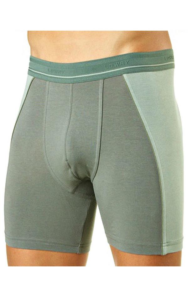 Трусы LowryТрусы<br>Серо-зеленые мужские трусы Lowry - это удлиненные боксеры, плотно прилегающие к телу. Они пошиты с учетом анатомического строения тела, что, в сочетании с приятным к коже материалом, делает их необычайно удобными в носке. В состав изделия входят хлопок и лайкра. Подходят для круглогодичной носки.<br><br>Размер RU: 44<br>Пол: Мужской<br>Возраст: Взрослый<br>Материал: хлопок 95%, лайкра 5%<br>Цвет: Зелёный